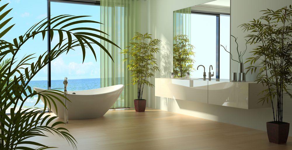 Wirkung von Planzen im Bad