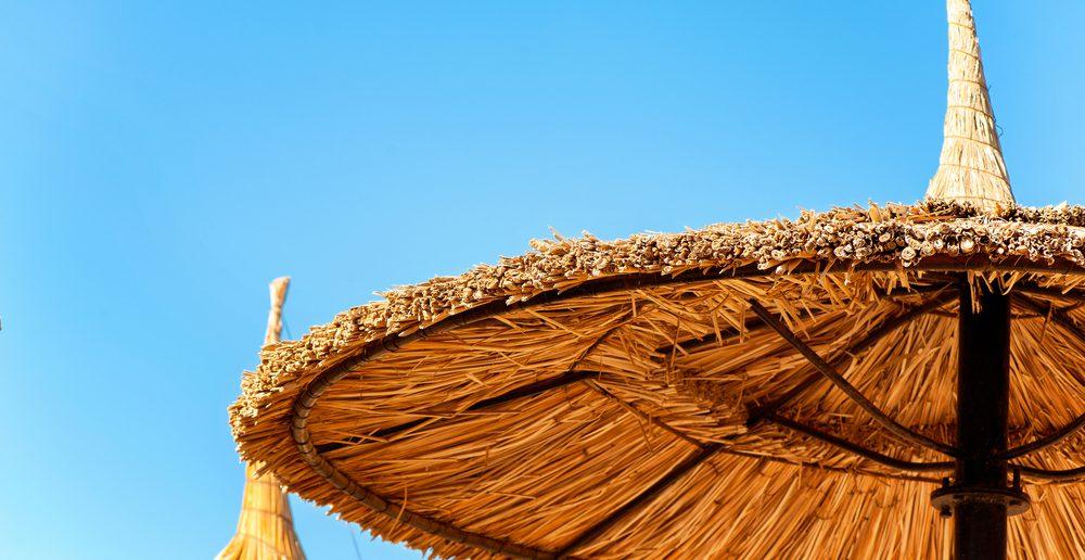 Schilfschirm Sonnenschirm Karibik